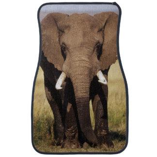 Éléphant de Bush d'Africain Tapis De Voiture