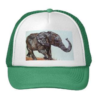 Éléphant de marche casquette