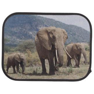 Éléphant de mère marchant avec le veau d'éléphant tapis de sol