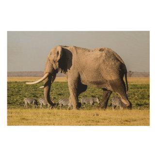 Éléphant et zèbres au point d'eau impression sur bois