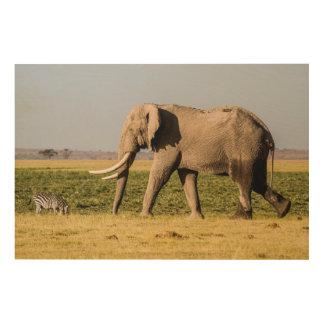 Éléphant marchant par un point d'eau impression sur bois