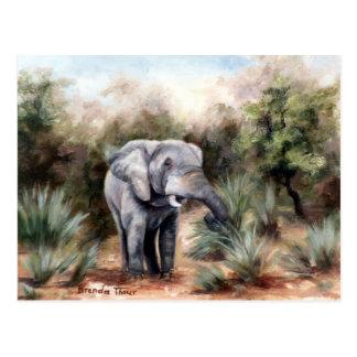Éléphant venant par la carte postale