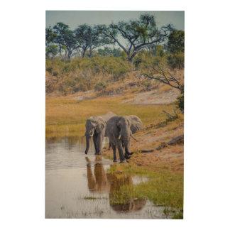 Éléphants à un point d'eau impression sur bois