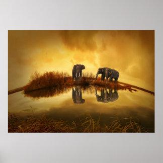 Éléphants asiatiques en Thaïlande sous un coucher Affiches