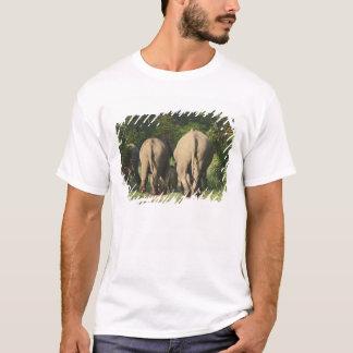 Éléphants d'Asie sur la voie de jungle, Corbett T-shirt