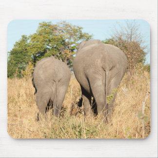 Éléphants marchant loin tapis de souris