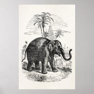 Éléphants personnalisés vintages d'éléphant affiche