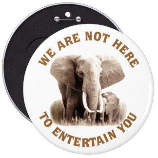Elephats méritent le respect badge