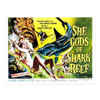 """""""Elle dieux carte postale de requin de récif"""""""
