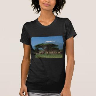 Elphants du mont Kilimandjaro T-shirt