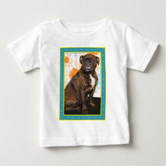 Elvis - pitbull -8 t-shirts