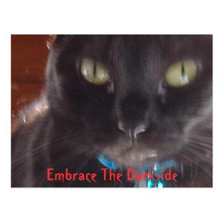 Embrassez le Darkside Carte Postale