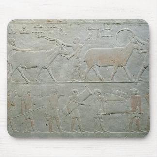 Employés conduisant un oryx et une antilope tapis de souris