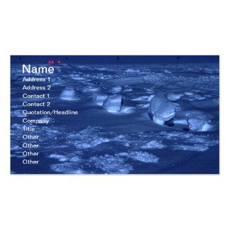 Empreintes de pas chez le Pôle du sud Carte De Visite Standard
