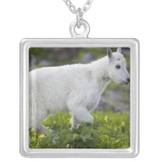 Enfant de chèvre de montagne au passage de Logan Pendentif Carré