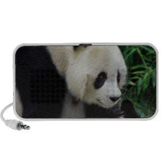 Enfantez le panda et le bébé dans le buisson en ba haut-parleurs de voyage