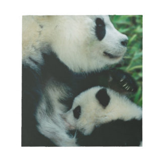 Enfantez l'petit animal de soins de panda, Wolong, Blocs Notes