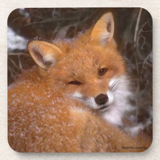 """Ensemble de dessous de verre """"de Fox rouge"""""""