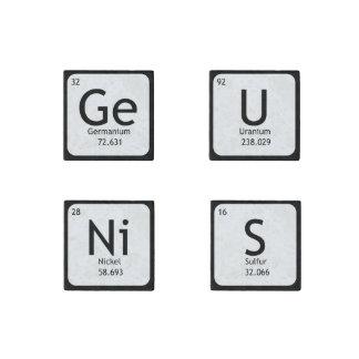 Ensemble de génie de quatre magnets en pierre