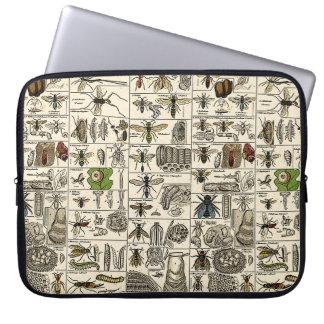 Entomologie vintage trousses ordinateur