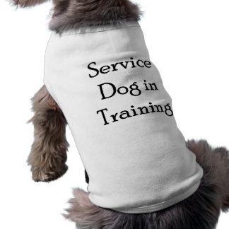 Entretenez le chien dans la formation t-shirt pour chien