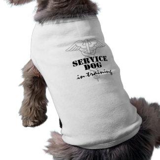 Entretenez le chien dans l'habillement fait sur t-shirt pour chien