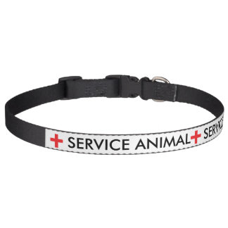 Entretenez le collier animal