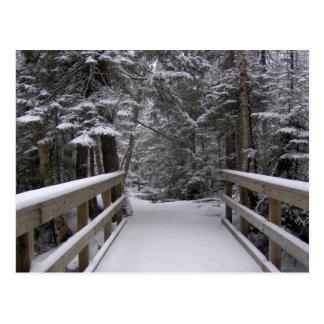 Entrez dans - la carte postale de scène de neige