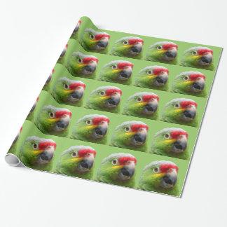 Enveloppe de cadeau de perroquet papiers cadeaux