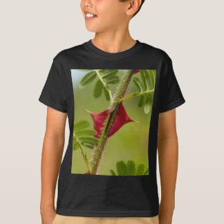 Épines de Rosa omeiensis. T-shirt