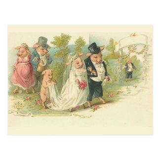 Épouser vintage de porcs cartes postales