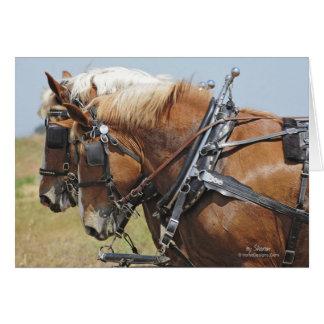 Équipe belge de cheval de trait carte de vœux
