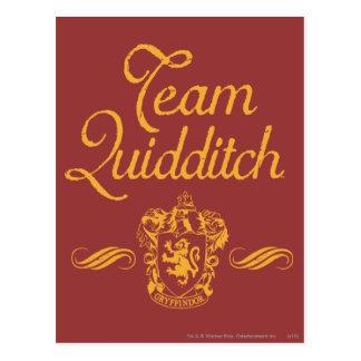 Équipe QUIDDITCH™ de Harry Potter | Carte Postale
