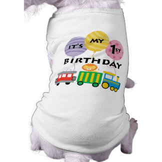 ęr Anniversaire de train d'anniversaire T-shirt Pour Chien