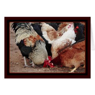 Éraflure de poulet cartes de vœux