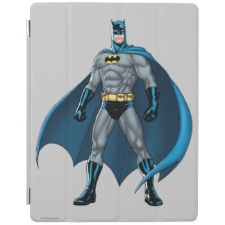 Éruptions de Batman Protection iPad