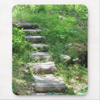 Escalier dans le tapis de souris de forêt