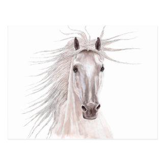 Esprit du cheval de vent - cru carte postale
