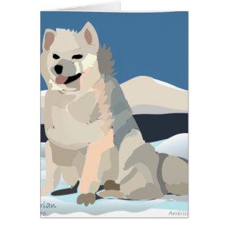 Esquimau d'Amercan - juste Chillin Carte De Vœux