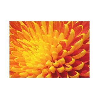 Et jaune toile étirée par chrysanthème orange
