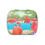 Étain tropical rose de sucrerie d'oiseaux de flama