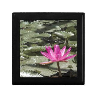 Étang de fleur de Lotus de zen Boîte À Souvenirs