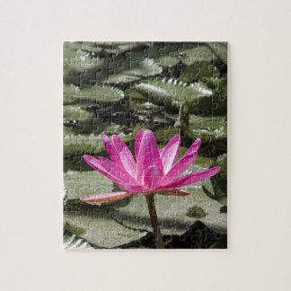Étang de fleur de Lotus de zen Puzzles
