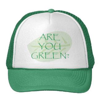 Êtes vous jour de la terre de vert casquettes de camionneur