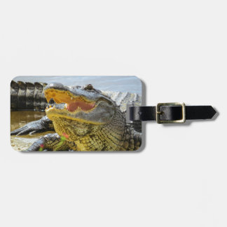 Étiquette À Bagage Alligator. Face à face