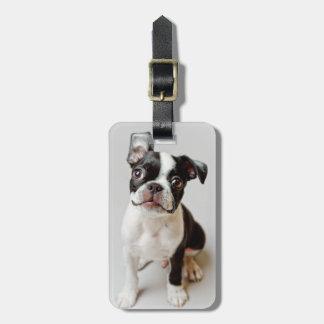 Étiquette À Bagage Boston Terrier