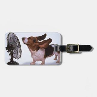 Étiquette À Bagage Brise - chien et fan