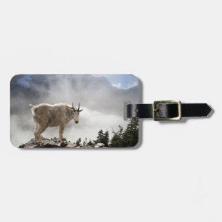 Étiquette À Bagage Chèvre de montagne en parc national de glacier