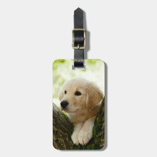 Étiquette À Bagage Chiot de Labrador se reposant dans un arrangement