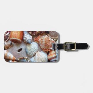 Étiquette À Bagage Coquillages par le bord de la mer